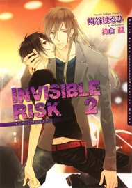 INVISIBLE RISK 2